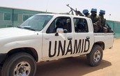 Unamid Supports
