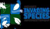 Contact Invasive Species