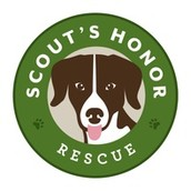 Scouts honor rescue