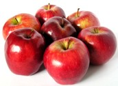 Apples are exportred