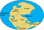 What is Continental Drift?