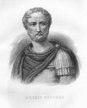 Pliny? Who's Pliny?