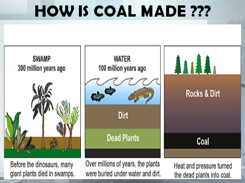 fossil fuel formation | smore newsletters