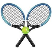 9. 8th Graders:  Do You Play Tennis?