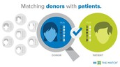 Donors are genetically matched to patients