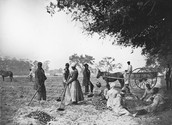 A photo of African American slaves working