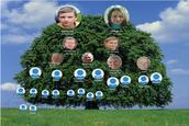 Моє родинне дерево