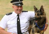 What Dog handlers job is