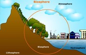 Where is the Biosphere?