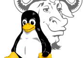 ¿Qué es Linux/GNU?