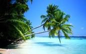 Qué hacer en el Caribe