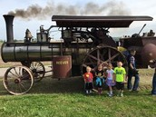 1st Grade - Henry Breeding Farm
