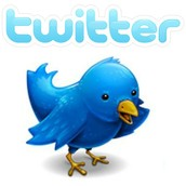 Using Twitter as a Professional Resource