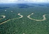 The Amazon River through the rain forest