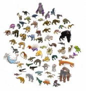 Biodiversity photo