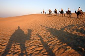 These are some Muslims walking threw the Sahara  Desert