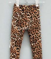 lepoard tights