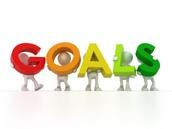 Professional/Personal Goals