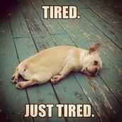 I confess ~ I'm tired ...