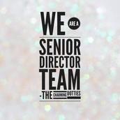 We hit Senior Director again in December!!