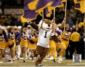 LSU Masscot Mike the Tiger