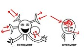 I Am  Extroverted