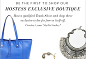 Stella and Dot has your Fall accessories covered