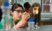3WET is organising a science fair at school!