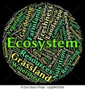 Science - Environments