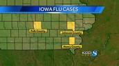 The Influenza Virus in Iowa