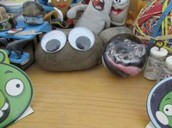 more pet rocks