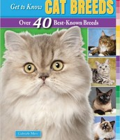 Get to Know Cat Breeds