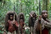 The Tribe walking through the vast rainforest plains