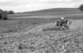 Farmers in Plantation