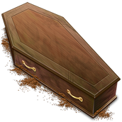 This picture is of a coffin