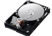 Hard Drives and SSDs