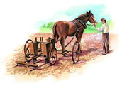 seed drill on a horse