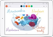 Opening page of Educreations