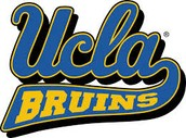 Contact UCLA