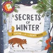 Secrets of Winter