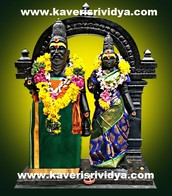 Kaveri Srividya