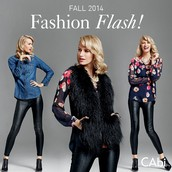 Hot off the press: Introducing the new FALL '14 Fashion Flash