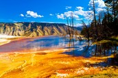 Yellowstone Hot Spot