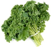 Why is kale a super-food?