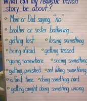 What can realistic fiction stories be about?  Some ideas...