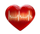 Book Your Heart Screening Today