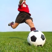 Verb Phrase: Kicked the Soccer ball