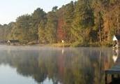 Lake Tyler