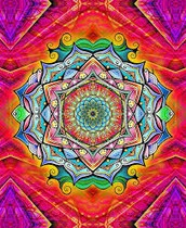 We are THE WORLD OF WISDOM & SPIRITUAL ADVENTURE