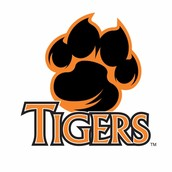 WE ARE TIGERS